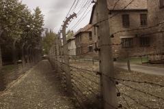 Alambrada de Auschwitz