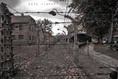 Alambres de espino en Auschwitz